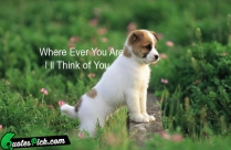 Where Ever You Are I Ll Think Of You